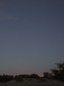 The Great Fish as observed from Tucson, Arizona, at 5:45am (45minutes before sunrise) on Oct 15, 2015. The first bright star above the trees is the last star of the Well Bucket.