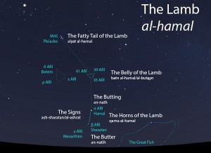 The Lamb (al-hamal) as it appears setting in the west about 45 minutes before sunrise in mid-November.