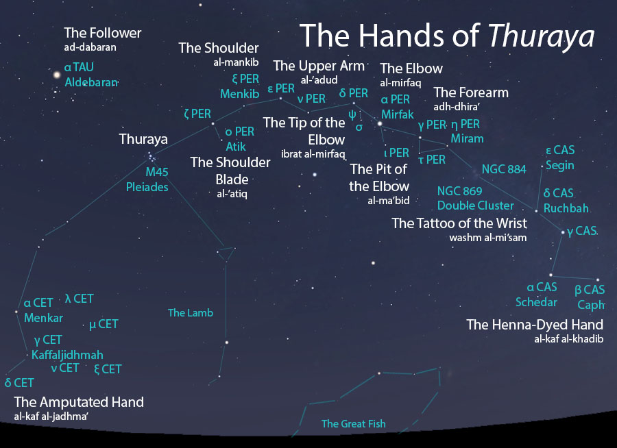 The Hands of Thuraya (aydi ath-thuraya) as they appear setting in the west about 45 minutes before sunrise in mid-November. Sky simulations made with Stellarium.