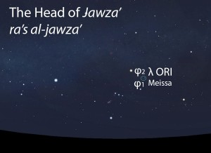 The Head of Jawza' (ra's al-jawza') as it appears in the west about 45 minutes before sunrise in early December.