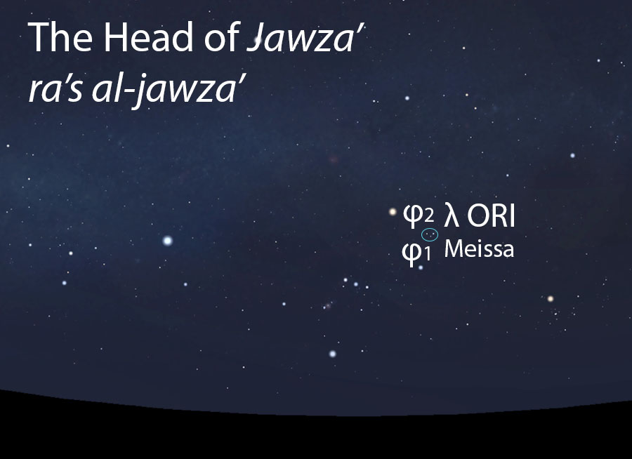 The Head of Jawza'