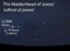 The Maidenhead of Jawza' ('udhrat al-jawza') as it appears in the west about 45 minutes before sunrise in early December. Sky simulations made with Stellarium.