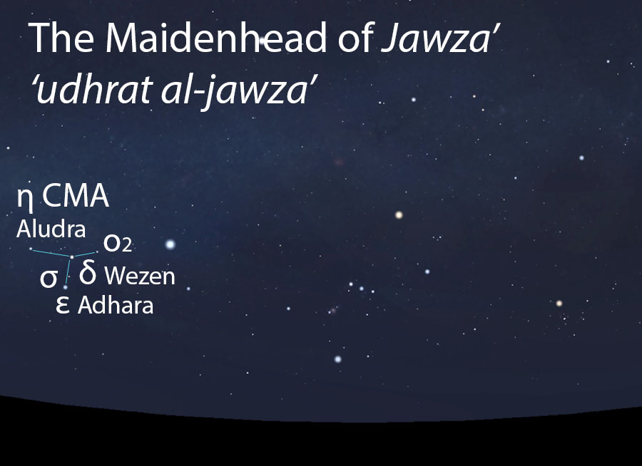 The Maidenhead of Jawza'