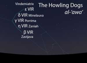The Howling Dogs (al-'awa') as they appear in the west about 45 minutes before sunrise in early March.