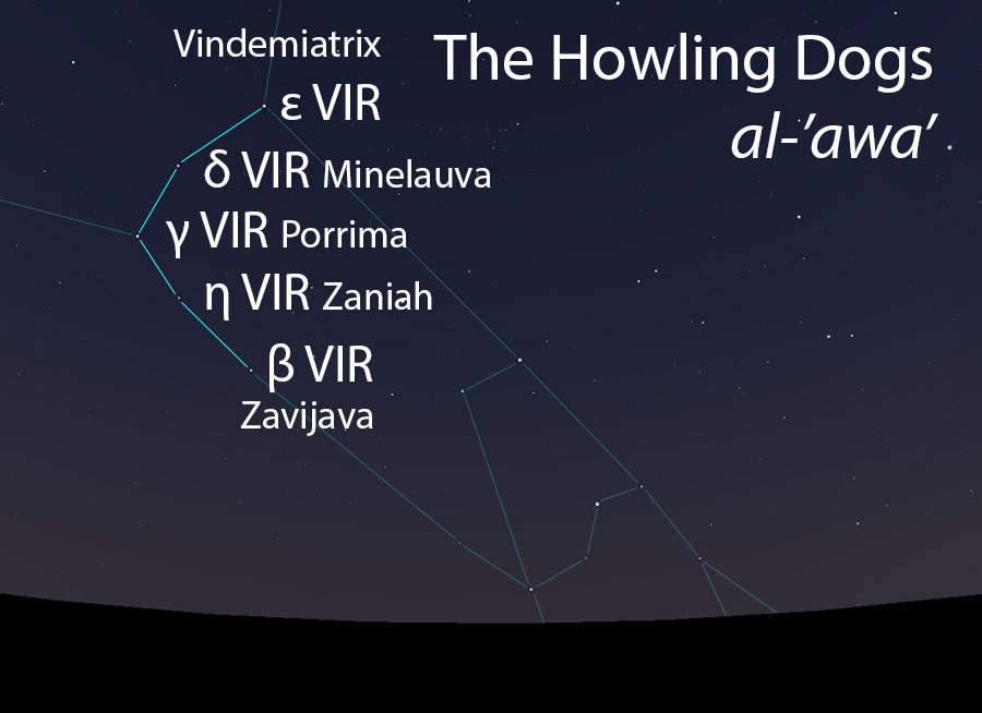 The Howling Dogs