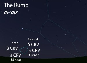 The Rump (al-'ajz) as it appears setting in the west about 45 minutes before sunrise in mid-March.