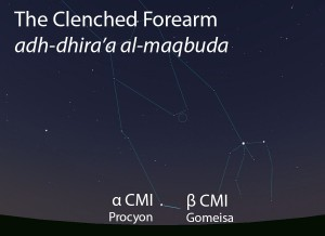 The Clenched Forearm (adh-dhira' al-maqbuda) as it appears setting in the west about 45 minutes before sunrise in early January.