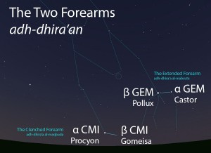 The Two Forearms (adh-dhira'an) as they appear setting in the west about 45 minutes before sunrise in early January.