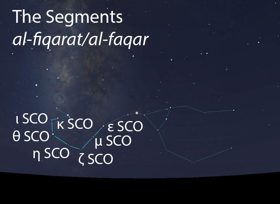 The Segments