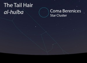 The Tail Hair (al-hulba) as it appears in the west about 45 minutes before sunrise in early March.