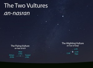 The Two Vultures (an-nasran) as they appear setting in the west about 45 minutes before sunrise in mid-August.