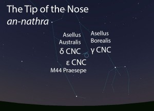 The Tip of the Nose (an-nathra) as it appears in the west about 45 minutes before sunrise in early January.