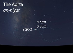 The Aorta (an-niyat) of the Scorpion (al-'aqrab) as it appears in the west about 45 minutes before sunrise in mid-May.