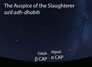 The Auspice of the Slaughterer (sa'd adh-dhabih) as it appears setting in the west about 45 minutes before sunrise in early August.