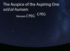 The Auspice of the Aspiring One (sa'd al-humam) as it appears in the west about 45 minutes before sunrise in early August.