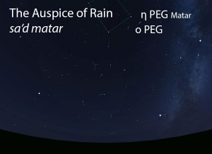 The Auspice of Rain (sa'd matar) as it appears in the west about 45 minutes before sunrise in early August.