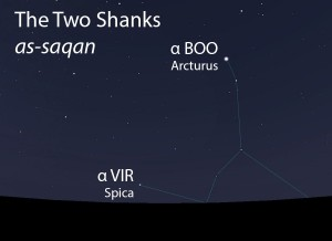 The Two Shanks (as-saqan) as they appear setting in the west about 45 minutes before sunrise in late April.