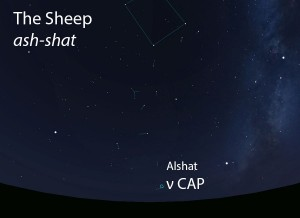 The Sheep (ash-shat) as it appears setting in the west about 45 minutes before sunrise in early August.