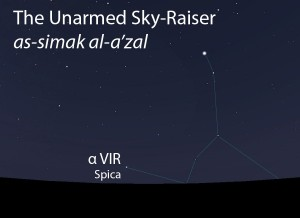 The Unarmed Sky-Raiser (as-simak al-a'zal) as it appears setting in the west about 45 minutes before sunrise in late April.