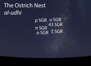The Ostrich Nest (al-udhi) as it appears in the west about 45 minutes before sunrise in late June.