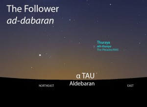 The Follower (ad-dabaran) of Thuraya as it appears rising in the east about 45 minutes before sunrise in late June.